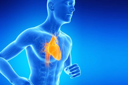 Semiologia Aplicada - II (Sinais e Sintomas do Sistema Cardiovascular)