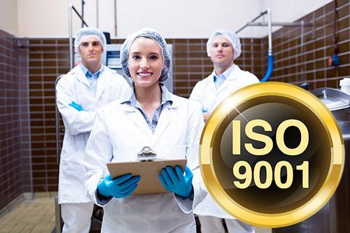 Requisitos e Implementação de Sistema de Gestão da Qualidade - Norma NBR ISO 9001:2015