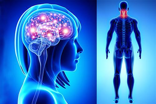 Semiologia Aplicada - Sinais e Sintomas da Cabeça e Pescoço