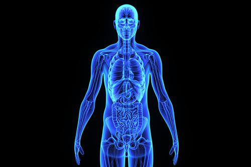 Semiologia Aplicada: Sinais e Sintomas Gerais e Inespecíficos